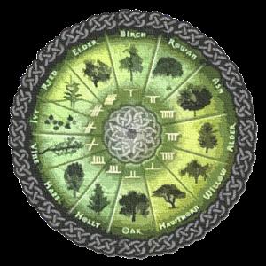 VEŠTICA JERA - Horoskopy - KELTSKÝ HOROSKOP